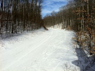 Boyne Highlands condo rental - Ski trail that runs by condo for ski in, ski out!!!