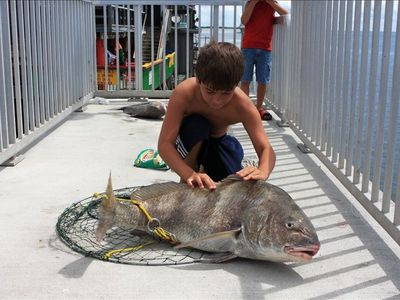 Small Kid, Big Fish!  42 lb. Black Drum