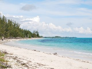 Grand Bahama Island villa photo - Wild Sandy Beach Grand Bahama Island