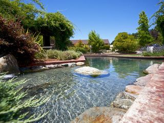 Healdsburg estate photo - Large pool/jacuzzi area.