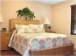 Spacious Master Bedroom with Queen Bed/Satellite TV(HBO) & Adjoining Full Bath