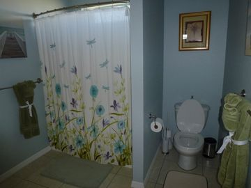 Spacious and bright master bathroom. Wheelchair accessible.