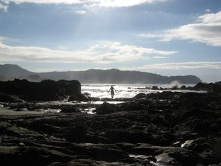Jaco condo photo - Low Tide in the Morning Time to Explore Tide Pools Flush with Sea Life