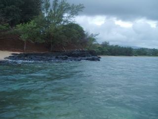 Anini Beach house photo - Great snorkling