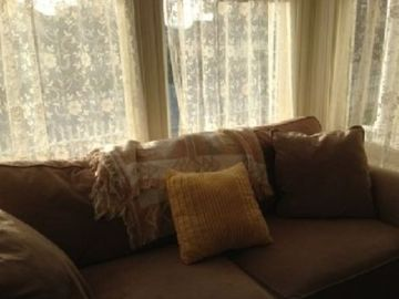 Couch and sofa bed by front window