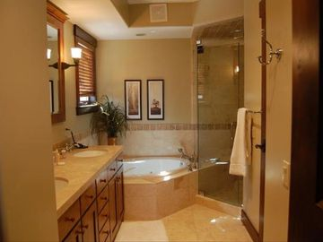 Master Bath with waterfall shower