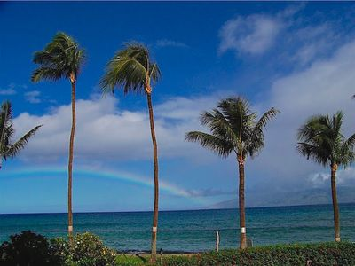 Enjoy this ocean view of palms (and the occasional rainbow) right from the lanai of suite 123 at The Paki Maui Resort