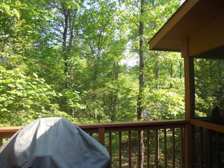 Townsend cabin photo - Large gas grill on deck overlooking back yard. Smell those steaks!