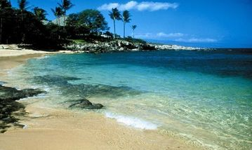 Kapalua condo rental - Beautiful Kapalua Beach