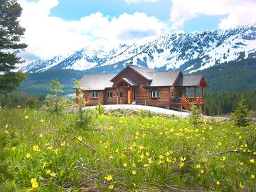 Bozeman cabin rental - Glacier Lilies in early spring with snow capped mountains - a great time to hike