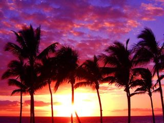 Maalaea condo photo - Sunset in Paradise
