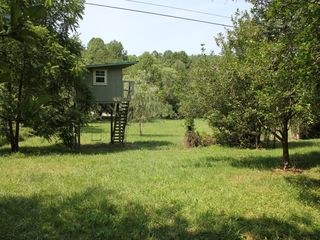 Blairsville cabin photo - Backyard and treehouse