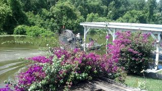 Tavares house photo - Airboat on the canal