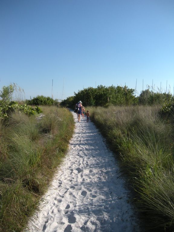 sandy path to beach