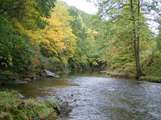 Asheville house photo - Enjoy the nature's finest colors outside your front door along the Cane River