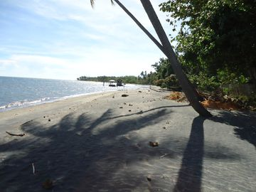 Looking down the beach to the right of the property.