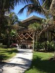 Newer home with a POOL surrounded by 40 coconut trees on a double lot! Privacy!