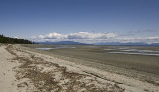 Parksville townhome photo - 5 KLMs of flat beach for hiking and exploring