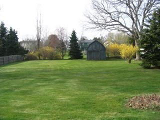 Westerly house photo - Huge back yard and Patio with Gas Grill / Picnic Area