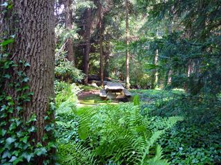 Seven Springs cabin photo - Private picnic area on property by creek