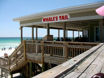 Located across street on the beach is Whales Tail, great food & drinks!