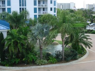 Palms of Destin condo photo - Beautiful Rock waterfall entrance into the The Palms of Destin Resort.