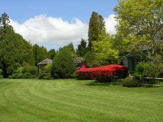 Water Mill house photo - Large Front Yard with specimen trees and shrubs providing full privacy