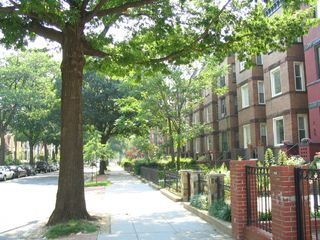 Columbia Heights apartment photo - Historic DC neighborhood. . .