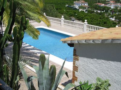 Oliva villa rental - Pool with Palm Trees for shade
