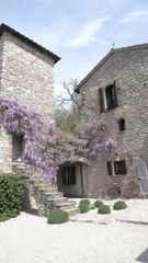 Antognolla farmhouse photo - Wisteria in full bloom