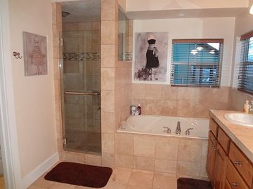 Master bathroom jetted tub and shower