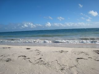 Punta Cana condo photo - Beautiful Beach