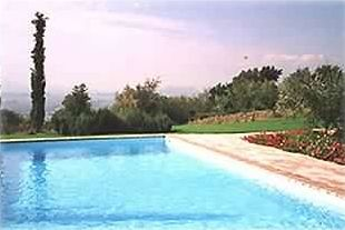 The pool with a view of Todi in the background
