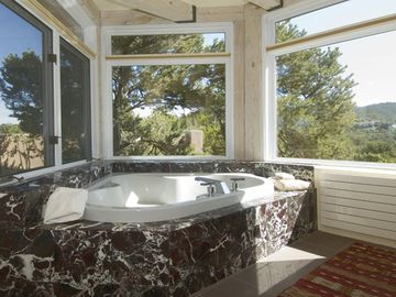 Master Bathroom w/ Views