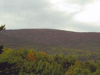 Bar Harbor house photo - View from home of Cadallic Mountain in Acadia National Park