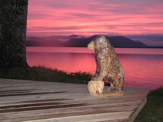 Ossipee Lake house photo - Bear is a favorite with everyone!