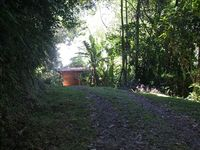 Caribbean Rainforest Home on Samasati Nature Preserve!