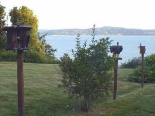 Camano Island house photo - Custom made bird houses line the property