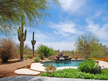 Scottsdale North house rental - Tranquil desert setting by the pool