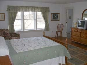 Guest Bedroom - Tom Nevers house vacation rental photo