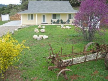 Mariposa house rental - Ideal Yosemite and Gold Country mountain getaway!
