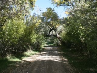 Farmington cabin photo - One of many paths to walk, jog or ride