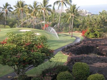 Play golf on the beautiful Kona Country Club Golf Course.