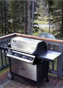 Everyone loves our dining deck w/large nat. gas grill overlooking river & pond