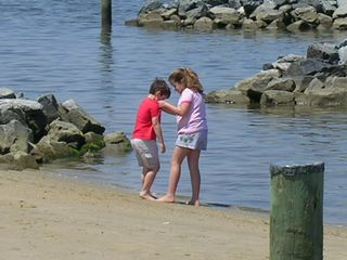 Crisfield house photo - Free public beach & dock close by