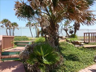 Galveston condo photo - Enjoy a stroll around Maravilla's lush grounds