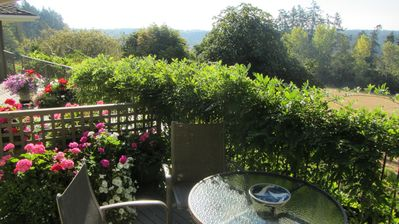Saanich estate rental - Private patio off your living room.