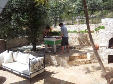Foozeball in the shade of the Olive tree