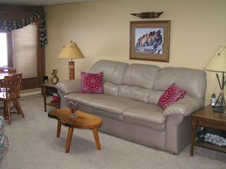 Crystal Mountain, Thompsonville house photo - Lower Level Family Room / Queen Sofa Sleeper