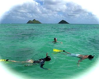 Kailua beach is perfect for all water activities.